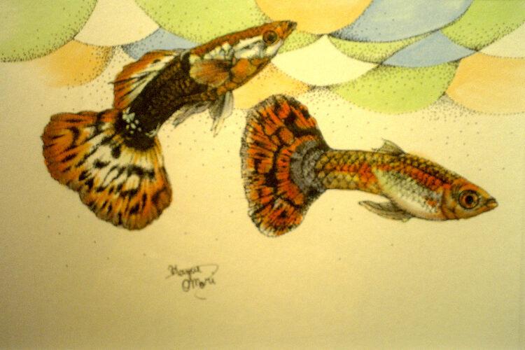 点描画 イラスト 動物画 魚の絵 美術 絵画 絵 アート