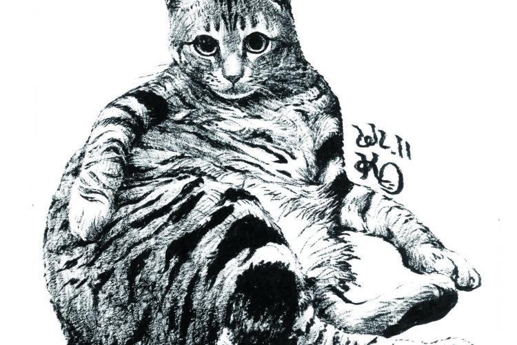 墨絵 猫の絵 イラスト 絵画 美術 アート