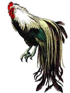 線画 動物画 お年賀 鳥の絵 美術 絵画 アート