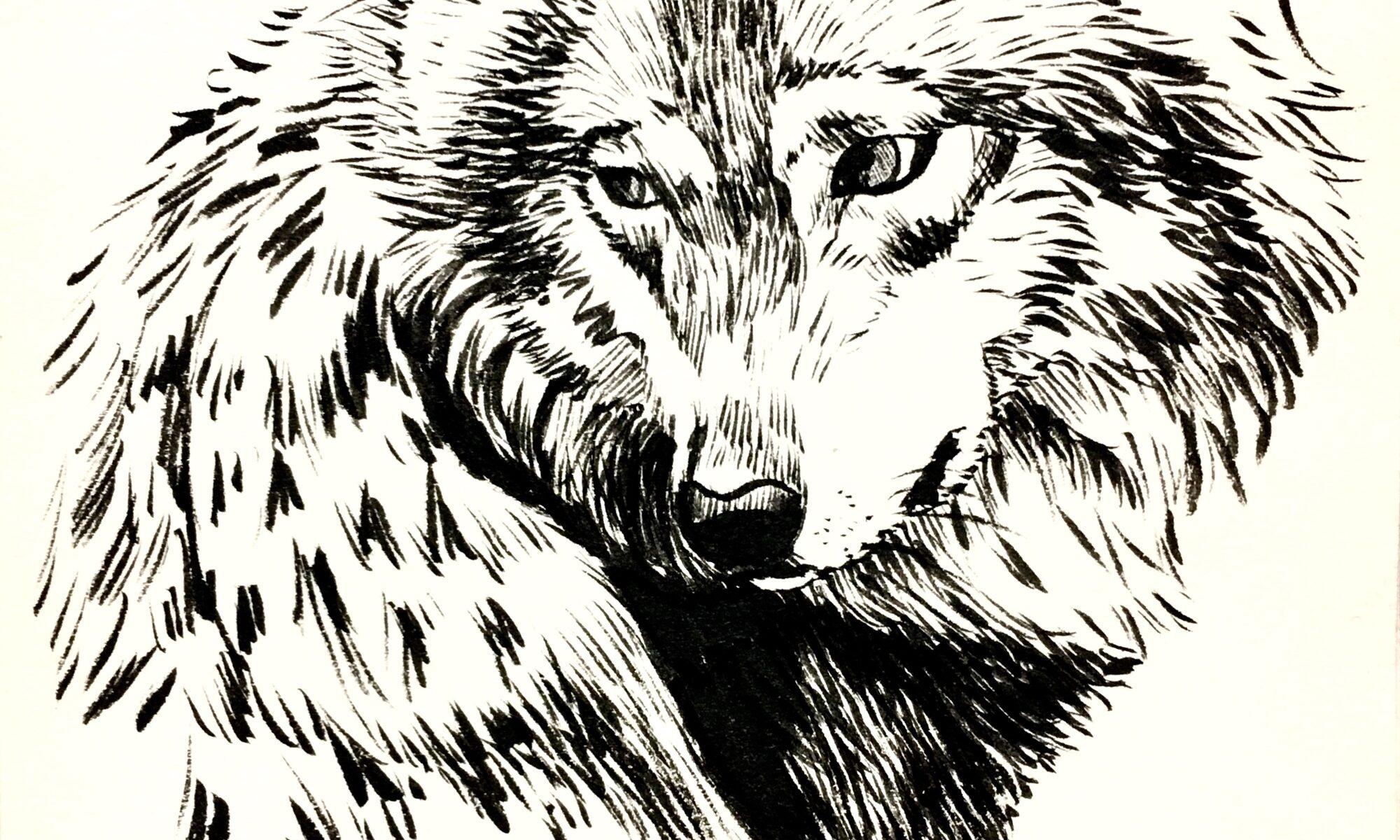 墨絵 動物画 イラスト 狼 美術 絵 アート